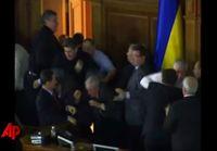 kansanedustajat tappelee ukrainassa