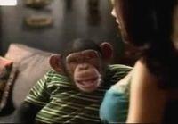 Puhuva apina
