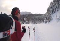 Hirvi juoksee lumessa