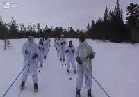 Norjalaiset hiihtojoukot