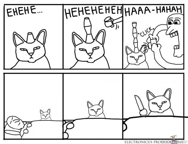 Kissaa Ei Kiinnosta