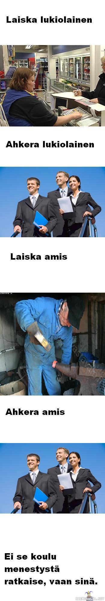 Amis Vs Lukio